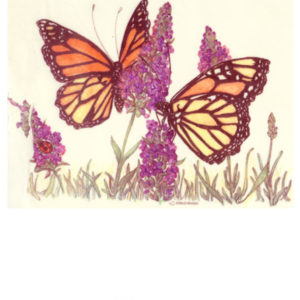 Edible Image ® by Lucks: Butterflies + Flowers