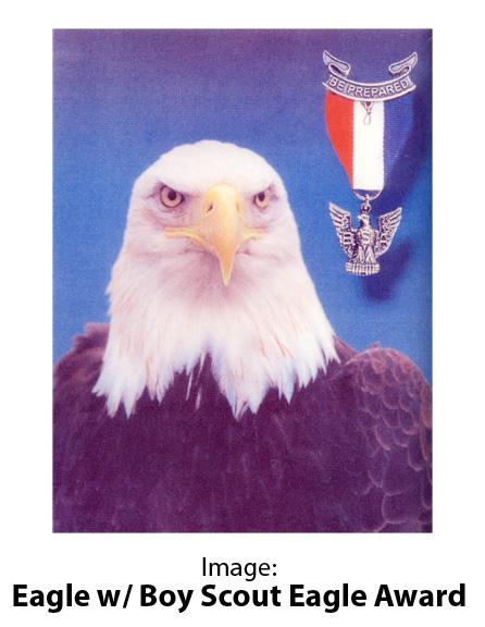 Image: Eagle w/ Boy Scout Eagle Award